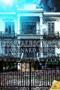 Convalescence – Book Review