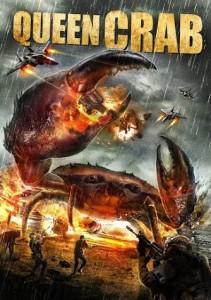 queen-crab