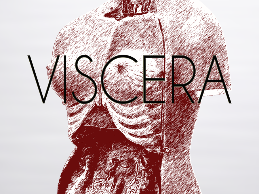 Viscera by Jessica B. Bell – Guest Blog Post