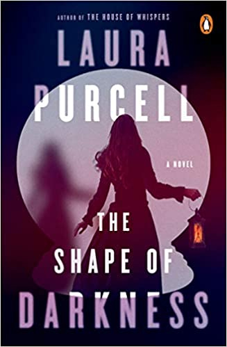 Book Review: THE SHAPE OF DARKNESS